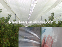 high quality greenhouse pe film 200 micron for agriculture