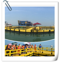 Aquaculture Farming Fish cages or Deep sea farming cage for tilapia catfish sea bream floating cage price