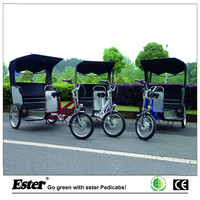 Electric Taxi Passenger Tricycle