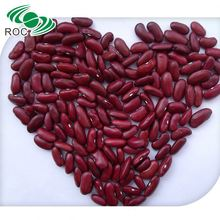 low price chinese small dark red kidney bean