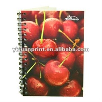 custom spiral notebook with dividers