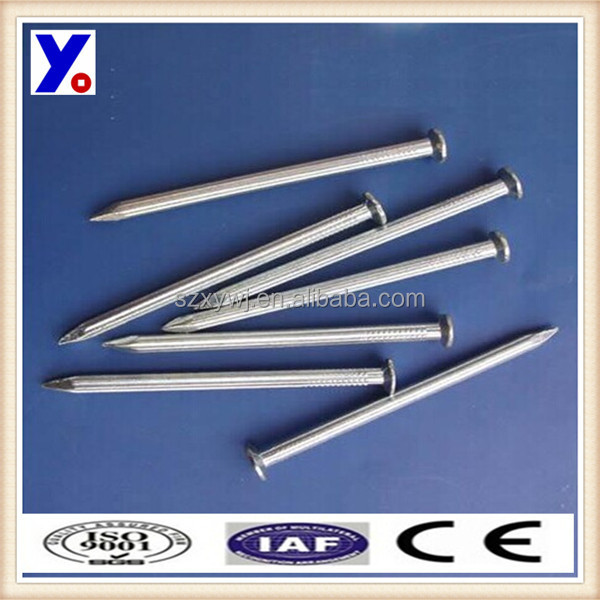 stainless galvanized Spiral Shank Concrete Steel Nails