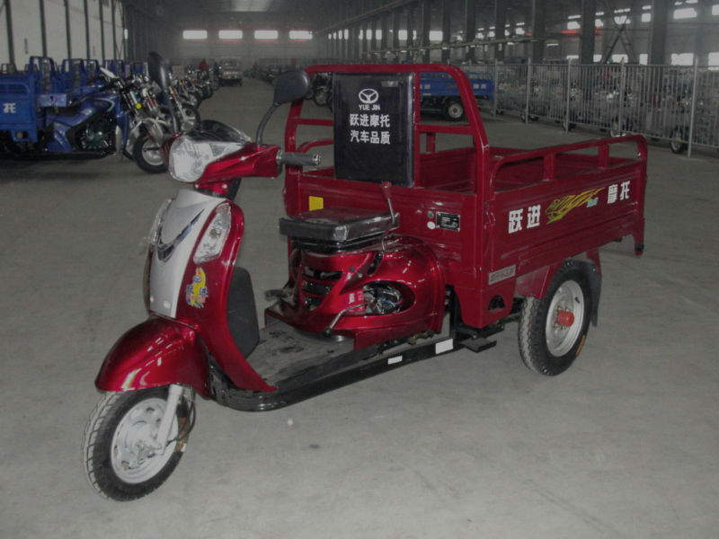 110cc leisure ,cargo tricycle