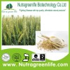 /product-detail/factory-supply-pure-naural-wheat-germ-powder-60221972873.html