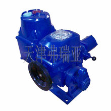 electric actuator rising stem gate valve