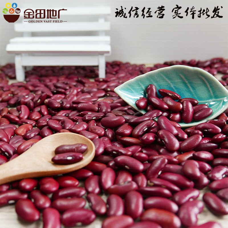 Dark red kidney bean HPS 2016 new crop with better price size200-220 on hot sale in China