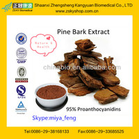 Factory Offer for 100% Natural Pine Bark Extract