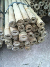 Plant Support bamboo cane 210cm, Dia.22-24mm