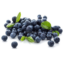 Organic Blueberry Extract Powder