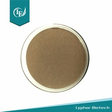 High Quality Water Soluble Propolis Powder