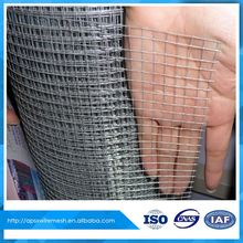 1/2 inch square hole galvanized welded wire mesh ( whatsapp +86 17734082565)