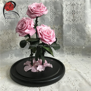Hot sell grade A+ forever rose in glass dome