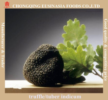 top quality organic fresh frozen black truffle
