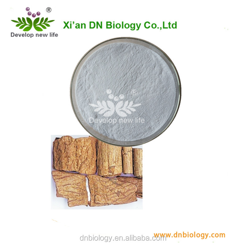 Eucommia ulmoides oliv extract,high quality eucommia ulmoides extract,cortex eucommiae p.e.