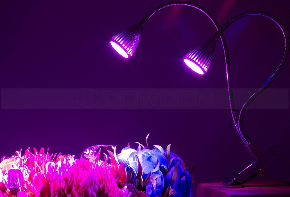 Dual Head Flexible Gooseneck LED Grow Light for Indoor Plant