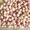 High Quality Healthy Dry Pinto organic beans wholesale