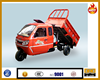 Water-cooled passenger tricycle 250cc two seat cargo tricycle gasoline truck three wheel