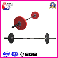 plastic barbell/barbell pad/industrial barbell