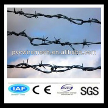 2013 Factory motto barbed wire
