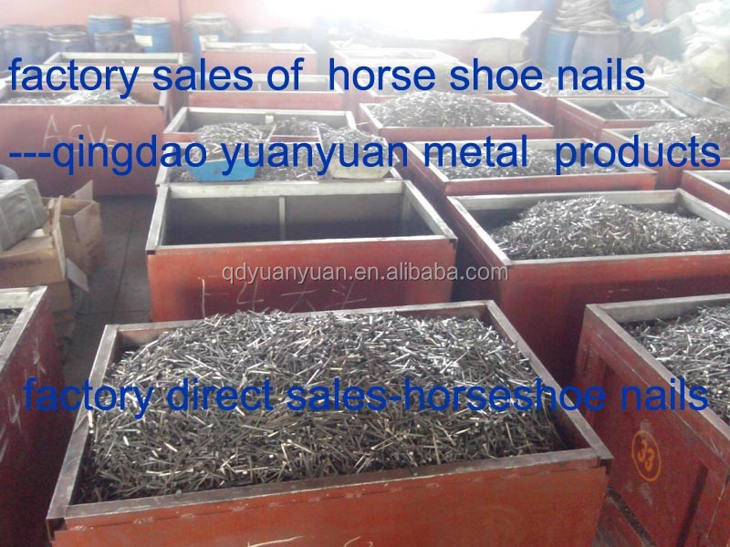 china factory professional quality steel horse shoe nails for sale