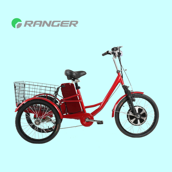 3 wheels electric tricycle for passenger with 36V 12Ah lead acid battery