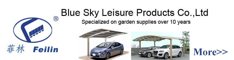 CE certification polycarbonate driveway gate canopy carports