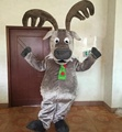 HOLA reindeer mascot costume/christmas costume for sale