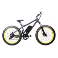 Big tire bike electric, stable E bike