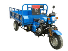Popular Chinese Cheap 3 Wheel Three Wheel Motorbike (WH20.2)