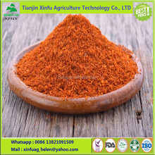 Hot spicy Dry red chili pepper powder