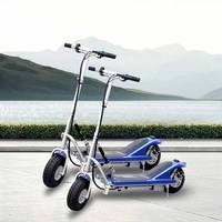 New Design 300W Mini two wheel kids scooters DR24300 with CE Certificate (China)
