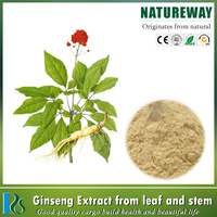 Pure Material Powder Panax Ginseng Extract Powder