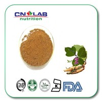 High quality kudzu root extract for improving immunity with best price