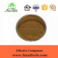 GMP Manufacture Nature cimicifuga racemosa extract