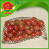 red fruit Delicious vegetable fresh cherry tomatoes for sale