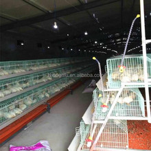 hot sale bird nest price malaysia/small farm equipment/chicken shed battery cage