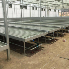 Skyplant Plastic Nursery Flood Tray 4'*8' Greenhouse Rolling Bench