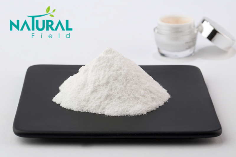 Hyaluronic Acid Powder CAS: 9004-61-9 with Professional Manufacturer Supply