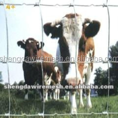 fixed goat fence / Grassland fence Anping exporter with low price