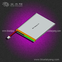 li-ion battery 3.7v 4000mah for tablet pc ,li-polymer 4000mah battery