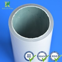 Professional Plastic 180micron Black and White LDPE Protective Film