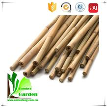 Raw bamboo/natural bamboo slim