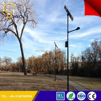 energy save Applied in More than 50 Countries 5 years Warranty cast iron lamppost