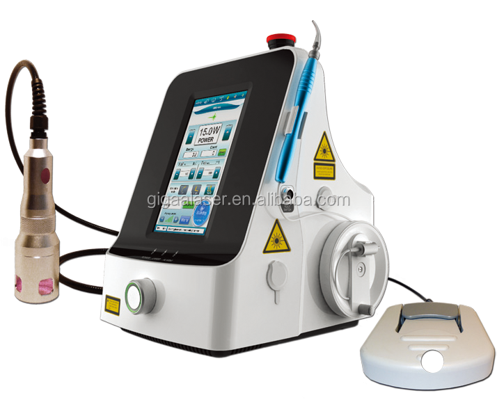 High Quality Medical Diode Laser for Pain Relieve with Medical CE
