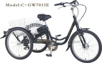 GW 7015 brushless 250W motor electric EN15194 Pedelec tricycle