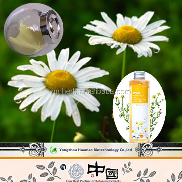 New product high quality organic chamomile extract apigenin extract