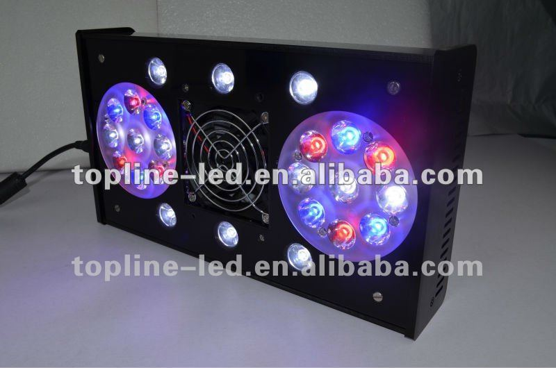 RainbowReef 24* 3W remote 90 degree optics led aquarium light