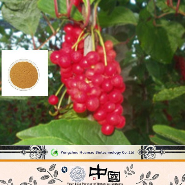 A with good price High quality Schisandra Berries P.E/Schizandrol