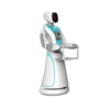 Humanoid Intelligent Robot Waiter with Talking Service Programmable