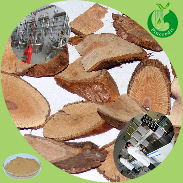 GMP factory supply high quality 98% puerarin kudzu root extract
